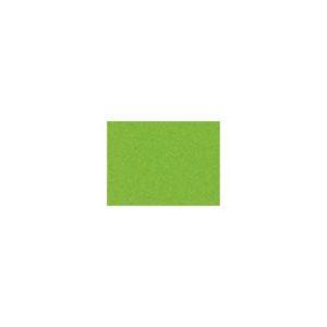 Kartong URSUS A4 220g lys grønn (50)