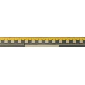 Linjal 30cm dm/cm/mm (10)