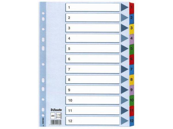 Register ESSELTE A4 mylar 1-12