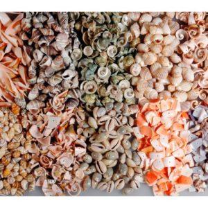 Snegler perler med hull 1 kg