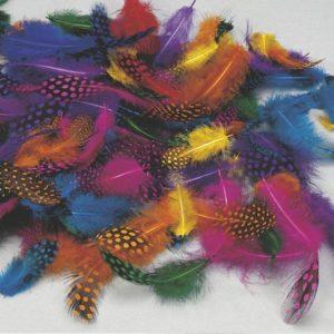 Perlehønsfjær assorterte farger (100)
